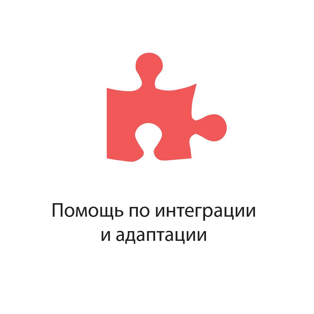 Помощь по интеграции и адаптации