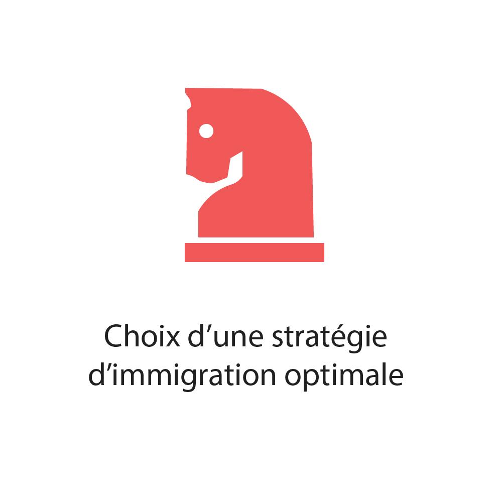 Choix d'une stratégie d'immigration optimale